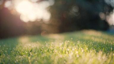 Miten kesän energia siirtyy syksyn arkeen?
